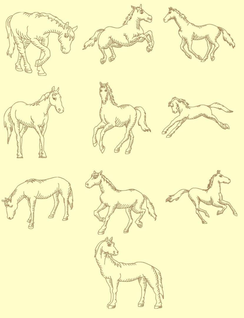 Horses Redwork & Trapunto design collection