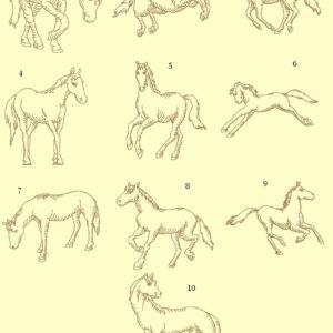 Horses Redwork Ala Carte Single Designs
